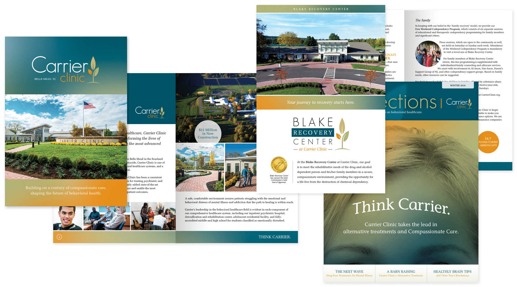 collateral design by First Looks for Carrier Clinic Behavioral Healthcare advertising efforts