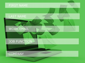 Web Designing Example of 5-field Web Form